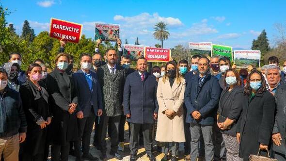 AK Partiden ağaç katliamına tepki