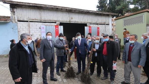 Çiftçilere sertifikalı 4 bin ceviz fidanı dağıtıldı