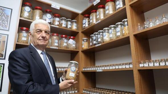 Muğla Büyükşehirden yerel tohuma önemli katkı