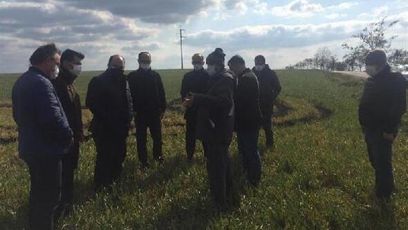 Kırklarelide, buğdayda soğuk zararının etkileri araştırıldı