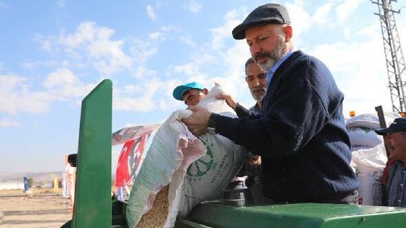 Kocasinan Belediyesi, 60 dönüm araziye aspir bitkisi ekti