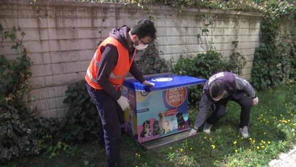 Yıldırım Belediyesi sokak hayvanlarını için çalışıyor