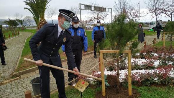 Trabzonda toplum destekli polislerden şehit fidanlığı