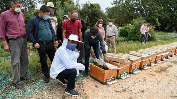 Kadınlara arı kovanı dağıtıldı