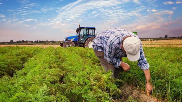 Verimli tarım için organik dokunuş