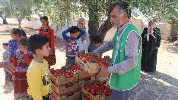 İHH Suriyede 22 ton domates dağıttı