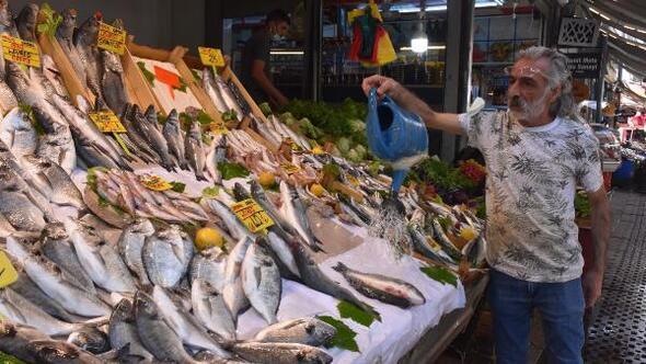 İzmirli balıkçı esnafı: Müsilaj satışları düşürdü