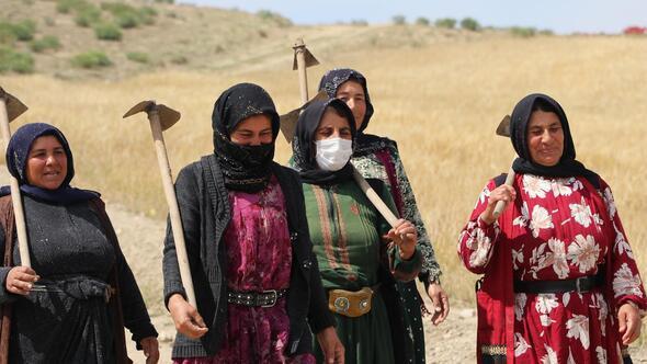 Mevsimlik işçiler tarlada aşı oldu