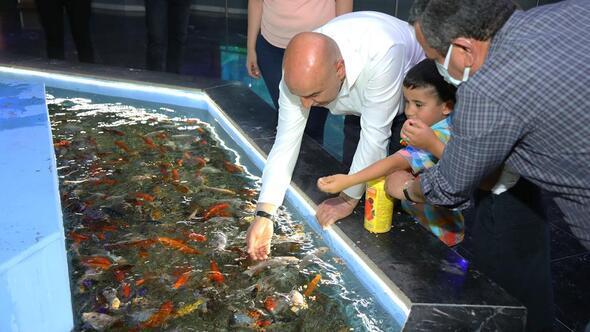 Biberonla Koi balığı beslediler