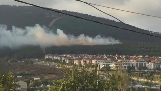 Son dakika... Pendik'de çıkan orman yangınıyla ilgili flaş gelişme