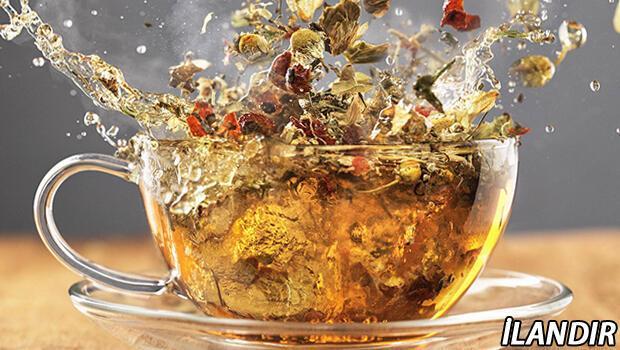 Hastalıklardan Uzak Bir Kış Geçirmek İçin, İçebileceğiniz 5 Farklı Çay