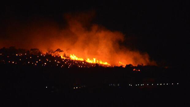 Ayvalık'ta orman yangını! Ekipler bölgeye sevk edildi