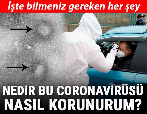Koronavirüsü nedir, neden ismi Korona Koronavirüsü semptomları ve riskleri hakkında bilmeniz gereken her şey