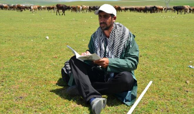 Üniversite mezunu çoban, hayvanlara bakarken KPSS'ye hazırlanıyor