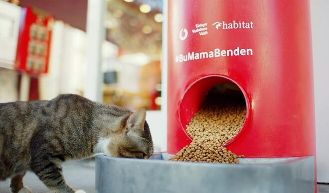 Sokak hayvanları #BuMamaBenden ile doyuyor