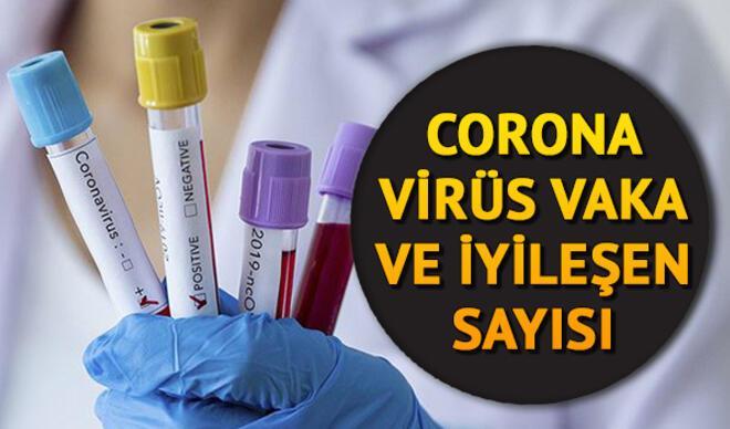 Corona virüs (koronavirüs) 24 Mayıs 2020 son durum tablosu: Dünyada ve Türkiye'de en son korona virüs vaka ve ölüm sayıları tablosu