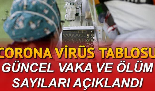 Koronavirüs salgınında dünya geneli ve Türkiye son vaka/ölüm sayısı 24 Mayıs güncel corona tablosu ve son durum açıklandı
