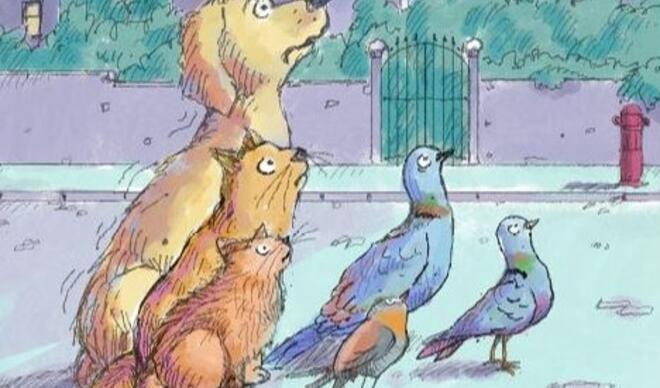 Havai fişekleri bir de kedilerden, köpeklerden dinleyin!