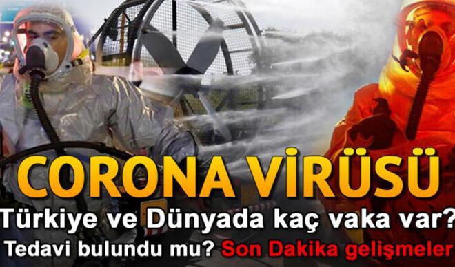 9 Temmuz koronavirüs(corona virüs) Türkiye tablosunda son durum: Dünyada ve Türkiye vaka ve ölüm sayısı - Covid 19 risk haritası