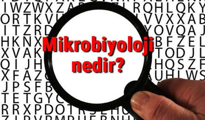 Mikrobiyoloji nedir? Mikrobiyolog ne demek? Mikrobiyoloji bilimi neler ile ilgilenir