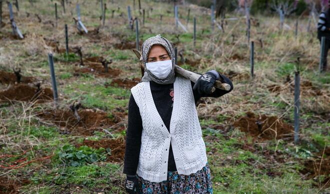 İzmirli kadınlar bağlarını imece usulü sezona hazırlıyor