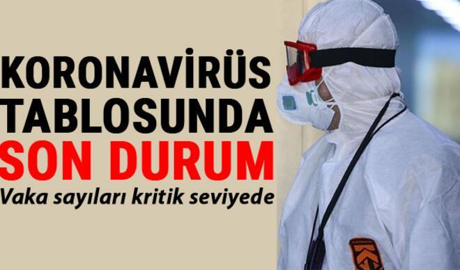 25 Şubat Koronavirüs Türkiye tablosu son durum: Corona virüs vaka sayısında tehlikeli artış... İşte Covid 19 verilerinde son açıklamalar