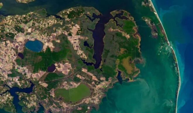 NASA yayınladı: 'Hayalet orman' uzaydan görüntülendi