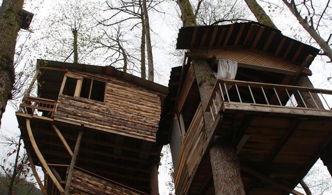 Rize'deki marangozdan ilginç mimari! Pandemi sığınağı yaptı, ağaç evde yaşıyor