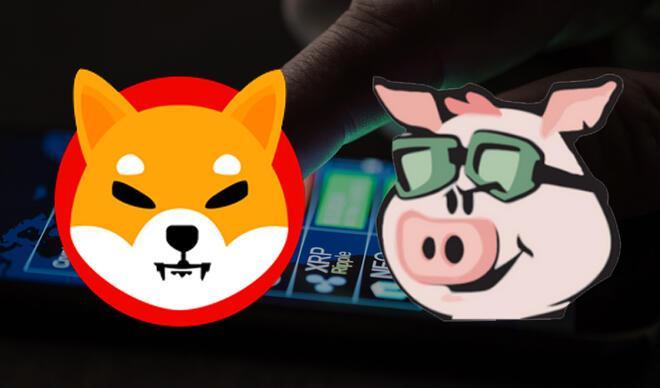 Shiba Inu ve Pig Finance'a büyük ilgi! Bol sıfırlı coinler yarışıyor