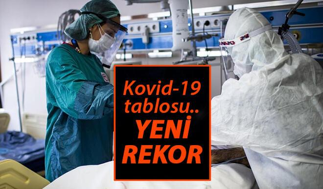 SON DAKİKA: 24 Haziran Koronavirüs Türkiye tablosunda son durum: Korona tablosunda günlük vaka sayısı ve vefat sayısı açıklandı..