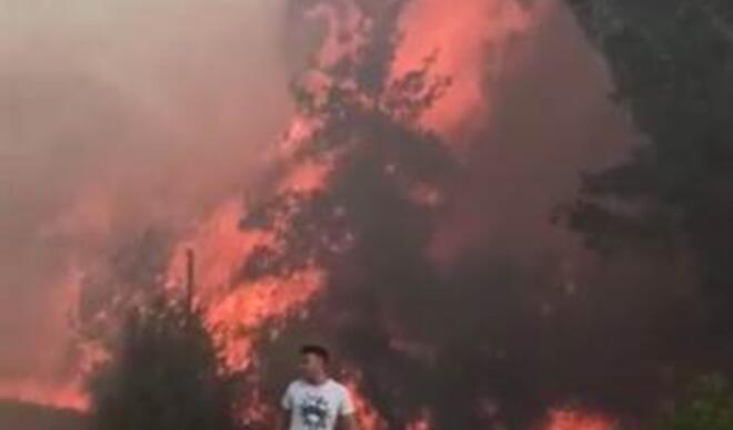 Adana'da iki ilçede orman yangını