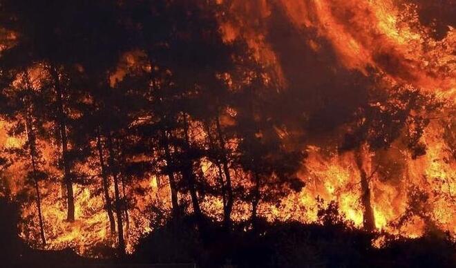 İklim krizi nedir? Türkiye'deki yangınların nedeni iklim krizi mi? Yangınlar ve iklim krizinin bağlantısı