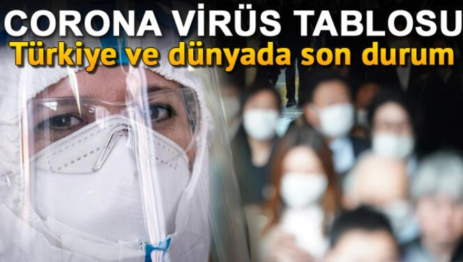 Corona Virüs 28 Mayıs Türkiye tablosu son durum: Kaç vaka var ölüm sayısı nedir? Koronavirüs (covid 19) risk haritası