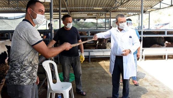 İzmir'de kurban pazarı denetiminde sopayla kurban pazarlığı