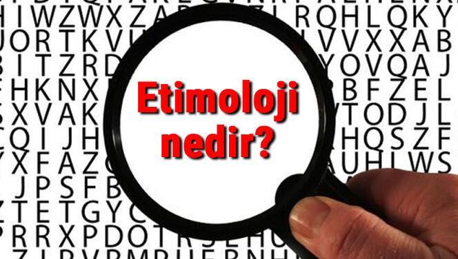 Etimoloji nedir? Etimolog ne demek? Etimoloji uzmanı (Etimolog) ne iş yapar