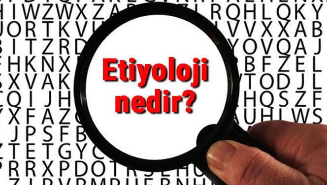 Etiyoloji nedir? Etiyolojik faktör ne demek? Etiyoloji bilimi neler ile ilgilenir
