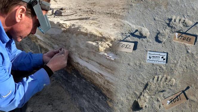 Bilim insanlarından tarihi sil baştan yazacak keşif