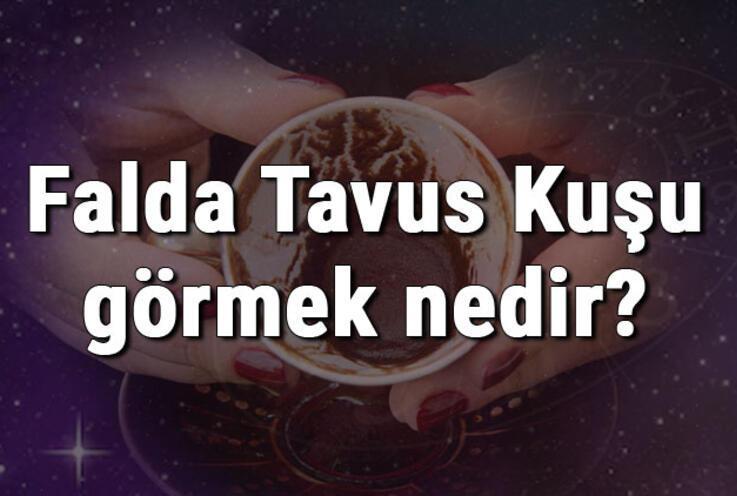 Falda Tavus Kuşu görmek nedir? Kahve falında tavus kuşu görmenin anlamı