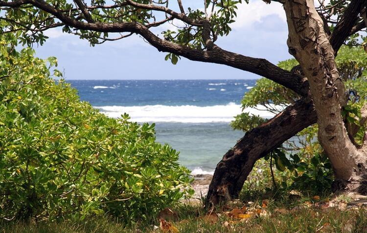 İki kere dünyanın en mutlu ülkesi seçildi: VANUATU