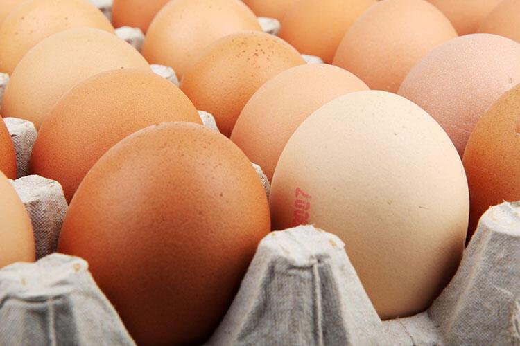 Kabuklu yumurta