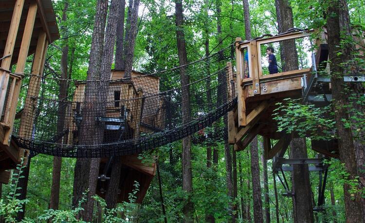 Ağaç ev cenneti