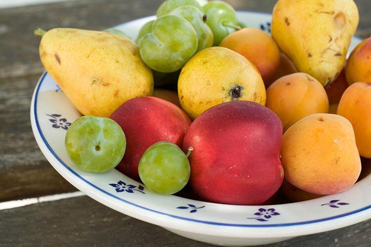 Meyvelerinizi buzdolabına mı tezgaha mı koyacağınıza karar veremiyorsunuz.
