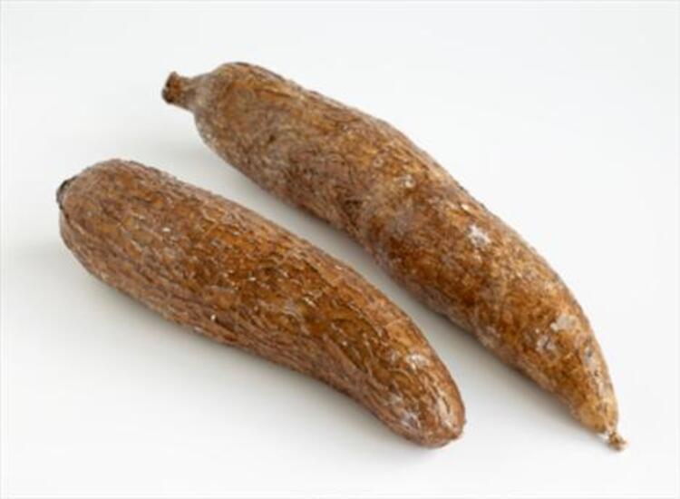 Cassava (Manyok)