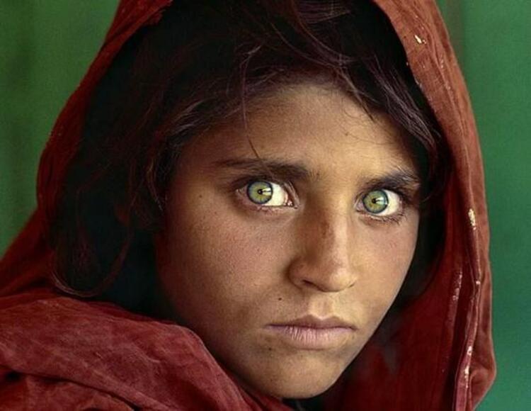 Onların en dikkat çekici yerleri büyük ve anlamlı gözleridir.