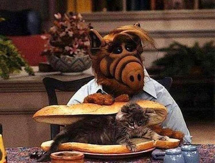 Alf..