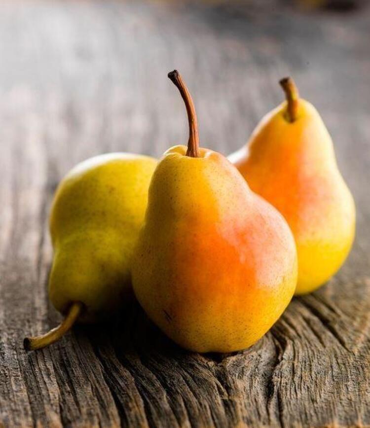 07.30 Aşağıdaki meyvelerden herhangi biri