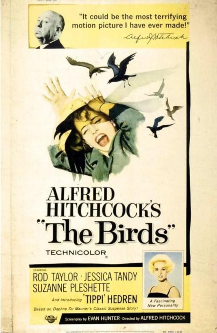 The Birds / Kuşlar (1963)