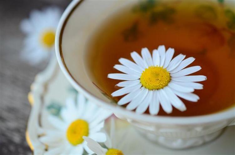 Her gün 2-3 fincan bitki çayı bağışıklık sistemini güçlendirir