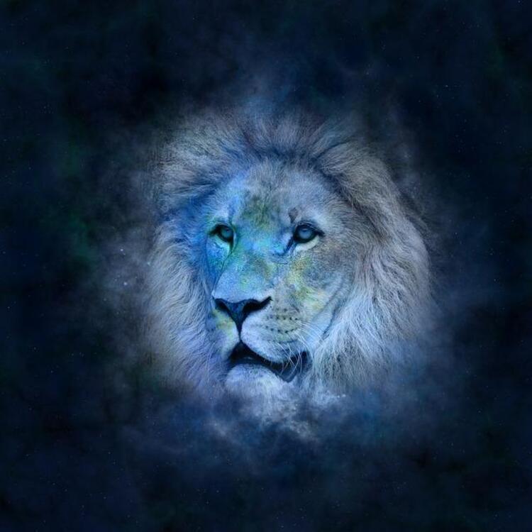 Sevgili Aslanlar ve Yükselen Burcu Aslan Olanlar: