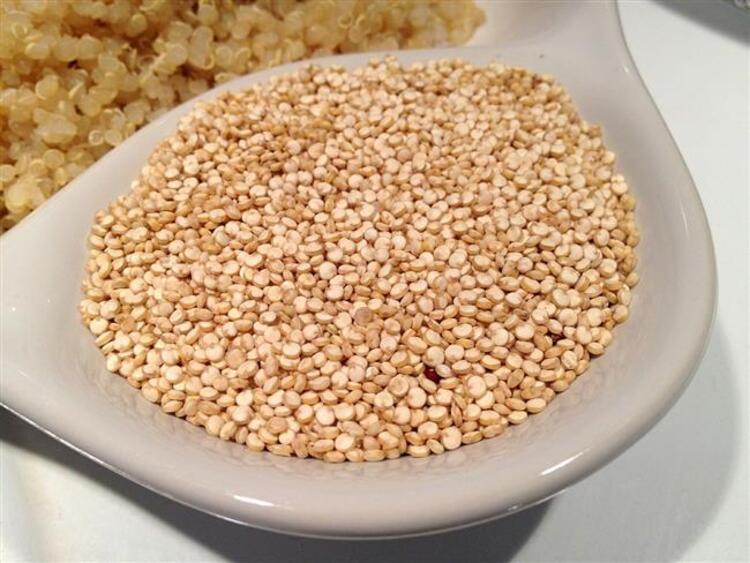 Karbonhidrat & Protein Kaynağı